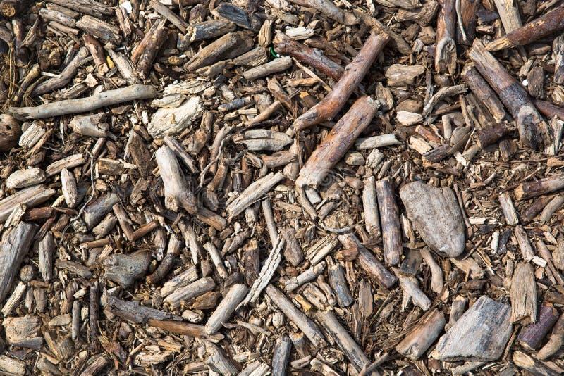 Fundo da madeira da tração madeira mar-tratada imagem de stock