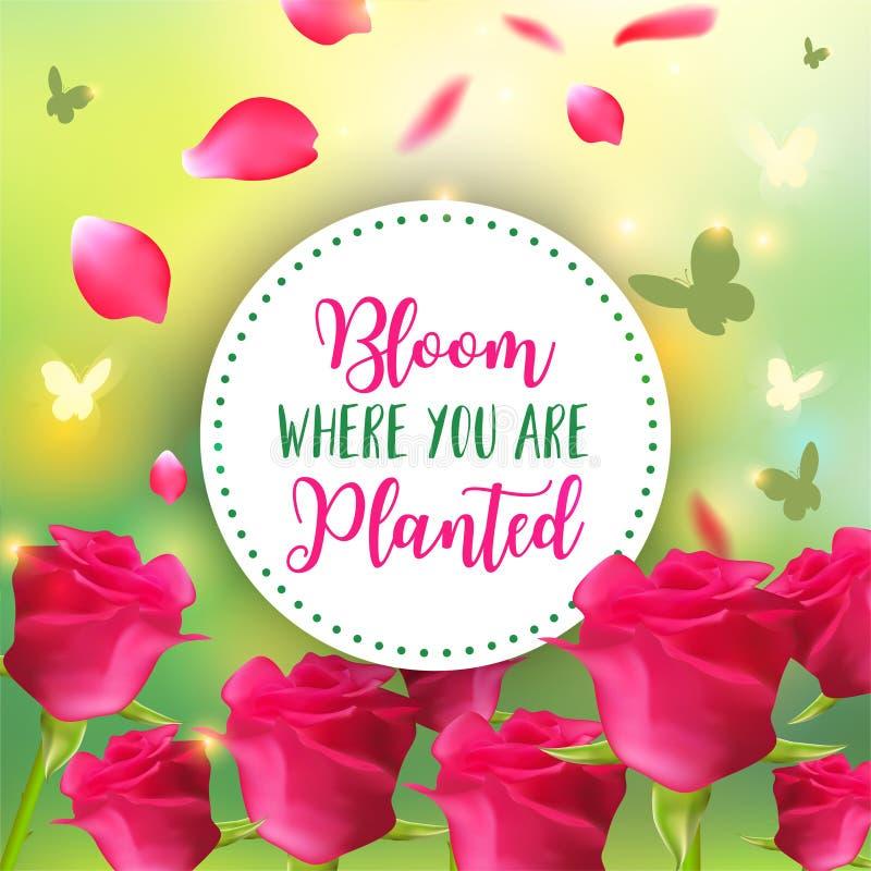 Fundo da mola Projeto do vetor de Bokeh Flor onde você é plantado Cartão abstrato ou projeto do cartaz com ilustração stock
