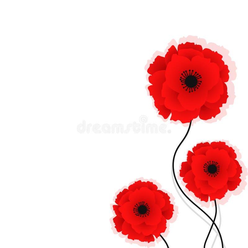 Fundo da natureza com as flores vermelhas das papoilas Ilustra??o do vetor Pode ser usado para a mat?ria t?xtil, os pap?is de par ilustração do vetor