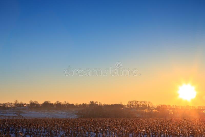 Fundo da natureza do nascer do sol fotografia de stock