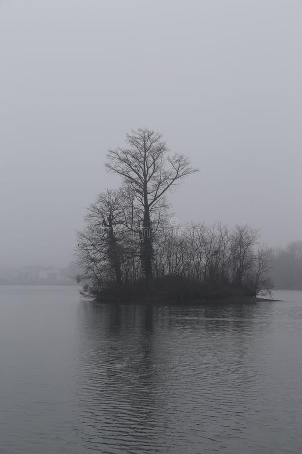Fundo da natureza: Ilha assustador e árvore fotos de stock