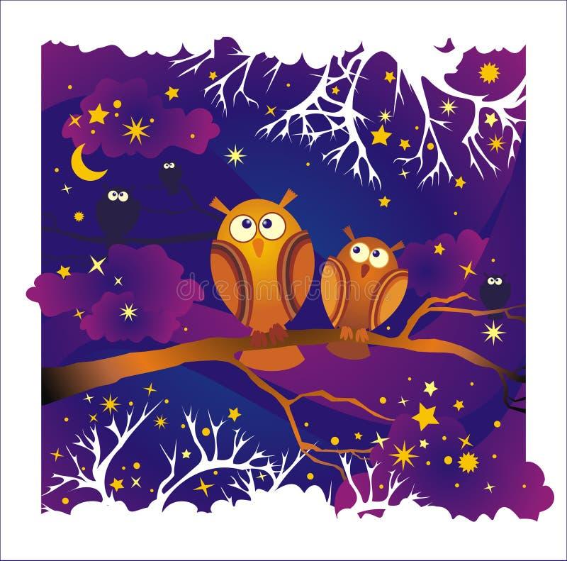 Fundo da noite do vetor com corujas ilustração royalty free