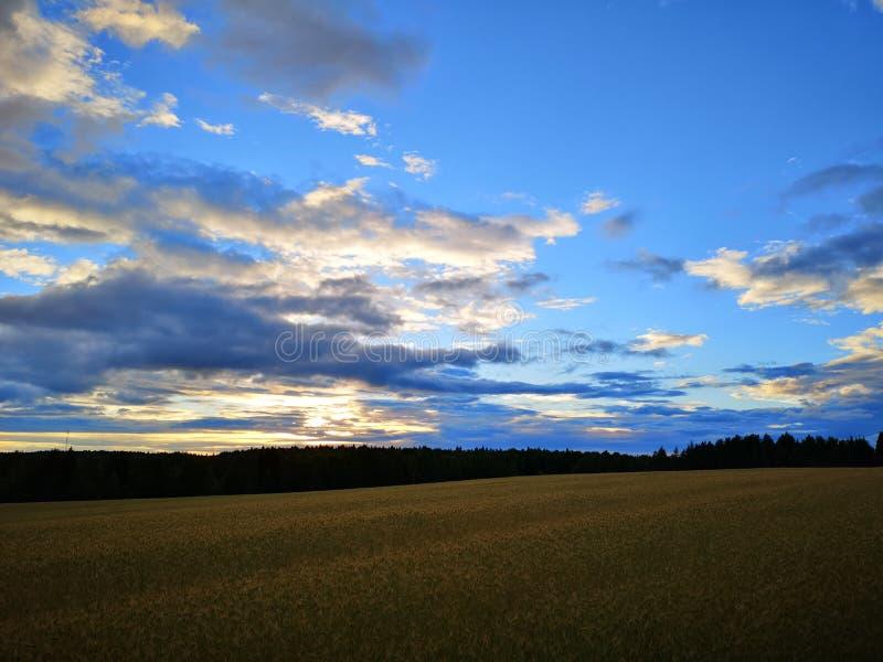 Fundo da noite da natureza com céu bonito fotografia de stock royalty free