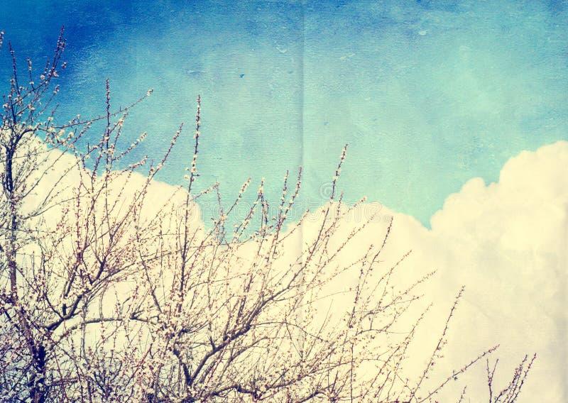 Fundo da nuvem do Grunge, textura de papel do vintage imagem de stock
