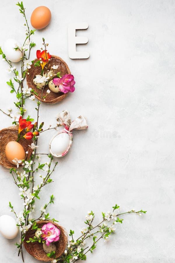 Fundo da Páscoa com os ovos da galinha e de codorniz, guardanapo da orelha do coelho e ramo da flor da mola fotografia de stock