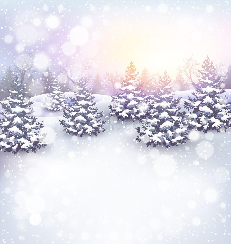 Fundo da paisagem do inverno com árvores de Natal e luz de Sun ilustração stock