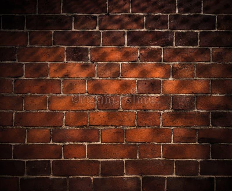 Fundo da parede de tijolo com sombra da grade fotos de stock royalty free