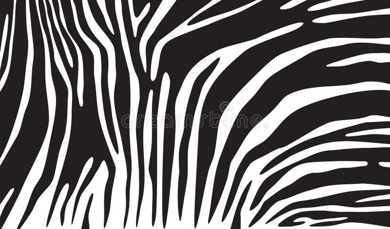 Fundo da pele da zebra ilustração do vetor