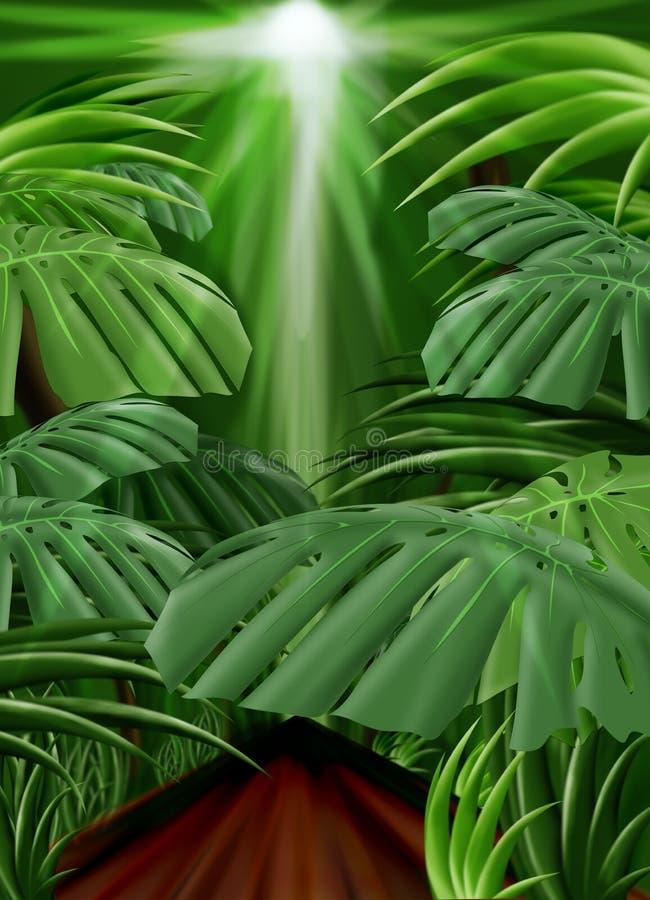 Fundo da selva (trajeto dianteiro da folha incluído) ilustração do vetor
