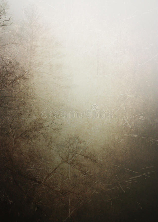 Fundo da textura da floresta do vintage imagem de stock royalty free