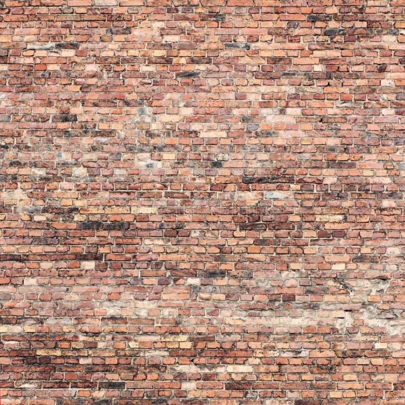 Fundo da textura da parede de tijolo vermelho fotografia de stock royalty free