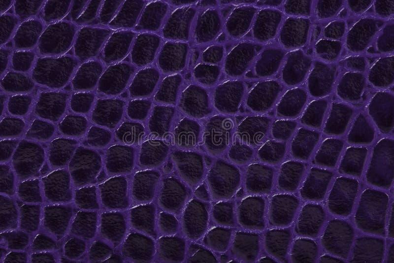 Fundo da textura do couro gravado do roxo imagem de stock