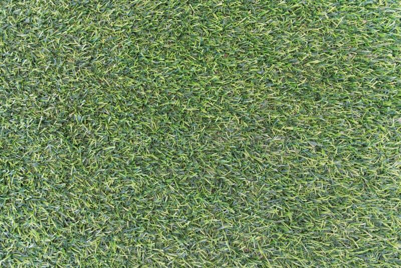Fundo da textura da grama verde Conceito da natureza e do papel de parede Ar livre e tema da decora??o foto de stock