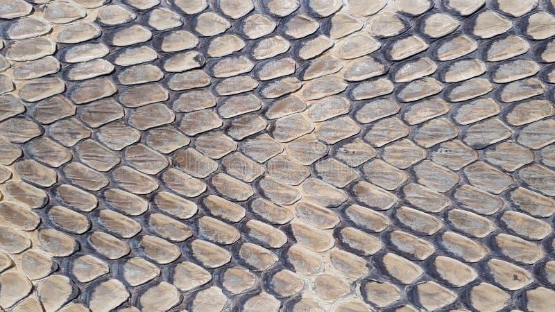 Fundo da textura da pele de serpente foto de stock