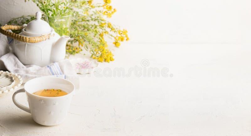Fundo da tisana com o copo com chá amarelo, potenciômetro do chá e ervas e flores frescas na tabela branca na parede Chá orgânico foto de stock royalty free