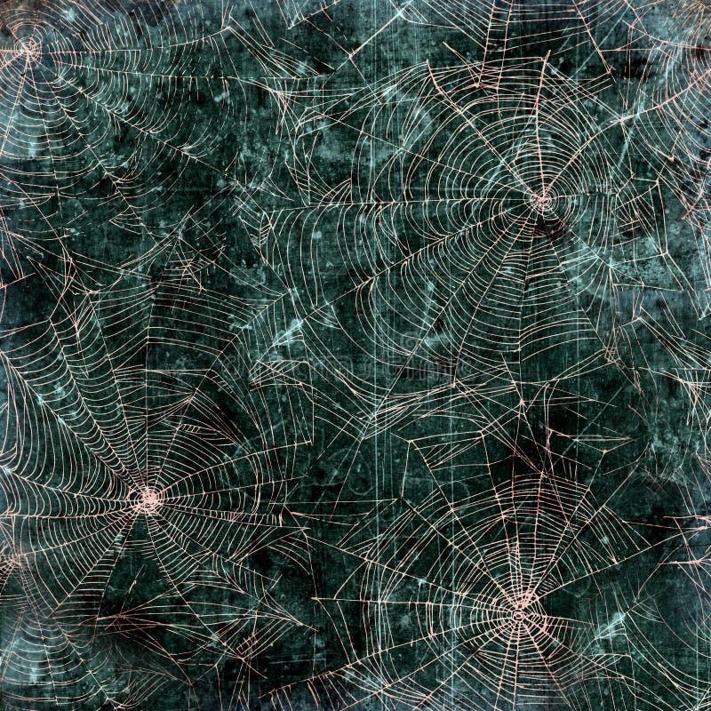 Fundo da Web de aranha - textura da teia de aranha imagens de stock royalty free