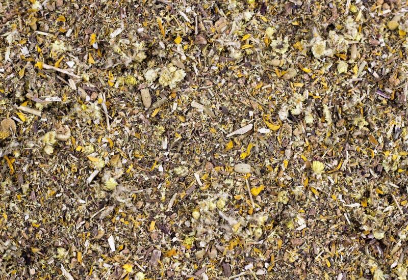 Fundo das ervas medicinais secadas orgânicas fotografia de stock royalty free
