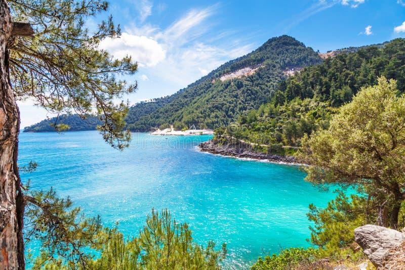 Fundo das férias de verão com a baía da água do mar de turquesa, nountains, pinheiros imagens de stock