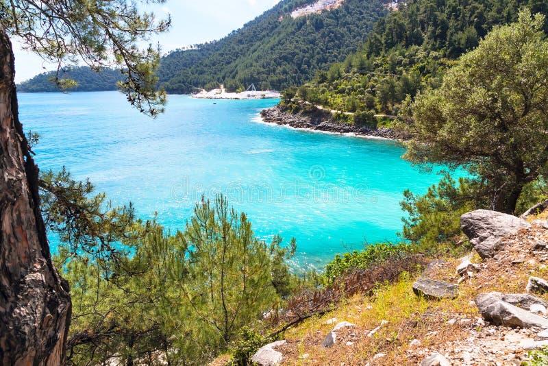 Fundo das férias de verão com a baía da água do mar de turquesa, nountains, pinheiros imagem de stock royalty free