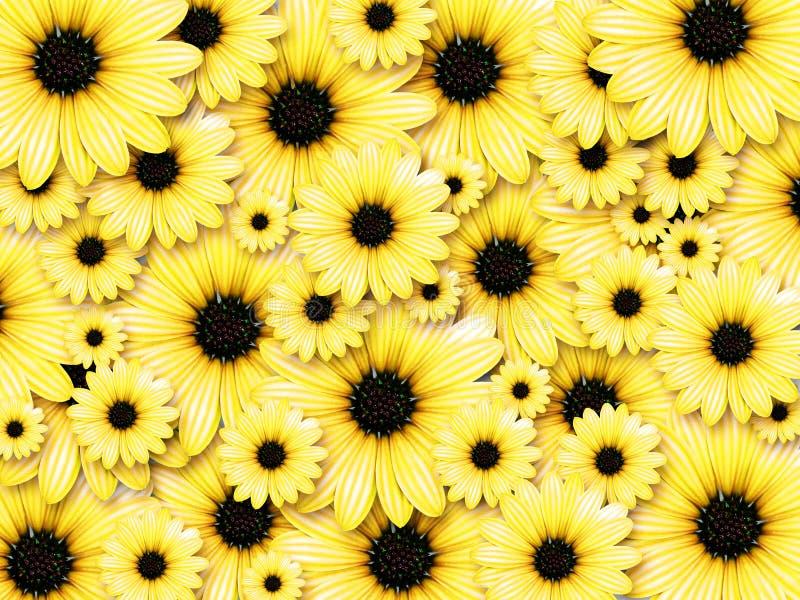 Fundo das flores amarelas fotografia de stock