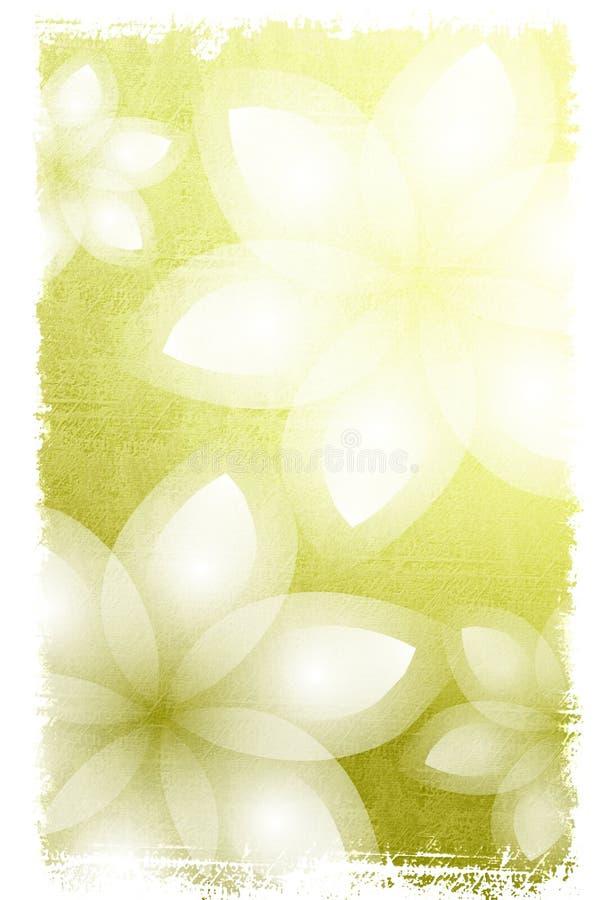 Fundo das flores brancas ilustração stock