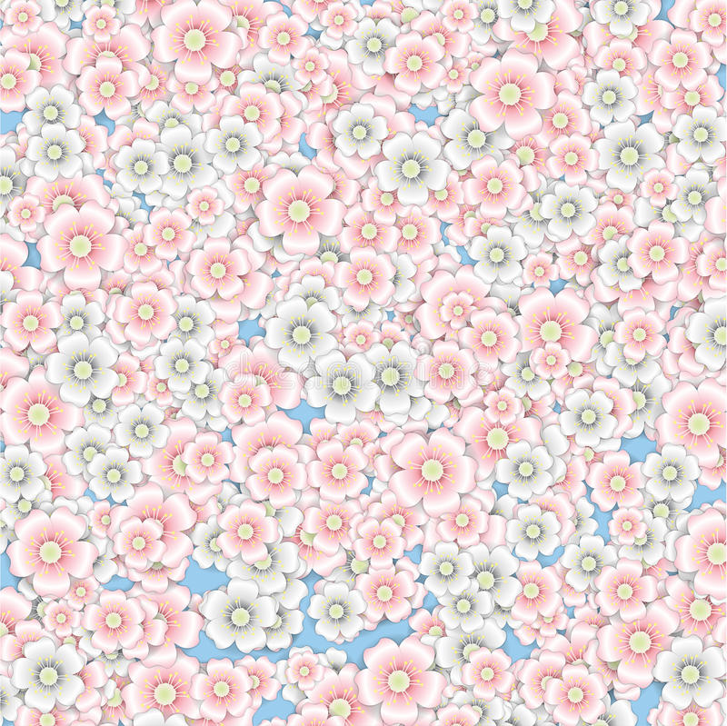 Fundo das flores de cerejeira cor-de-rosa e brancas ilustração royalty free