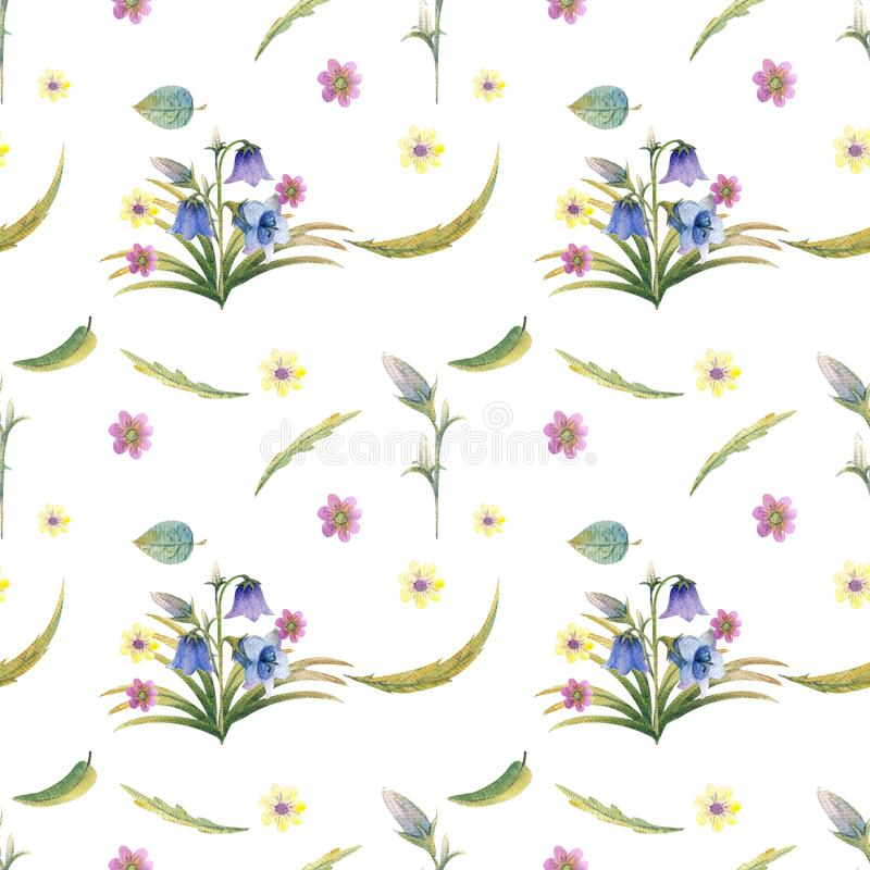 Fundo das flores selvagens ilustração royalty free