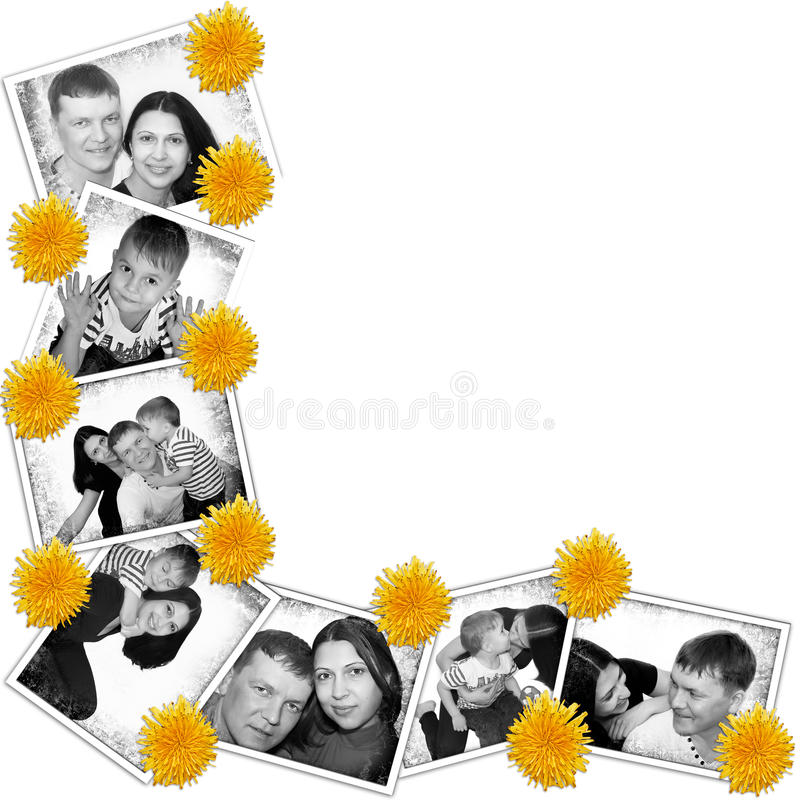 Fundo das fotos com flores fotografia de stock royalty free