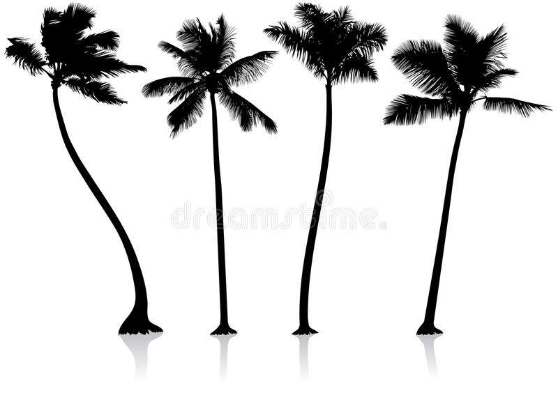 Fundo das palmeiras ilustração do vetor