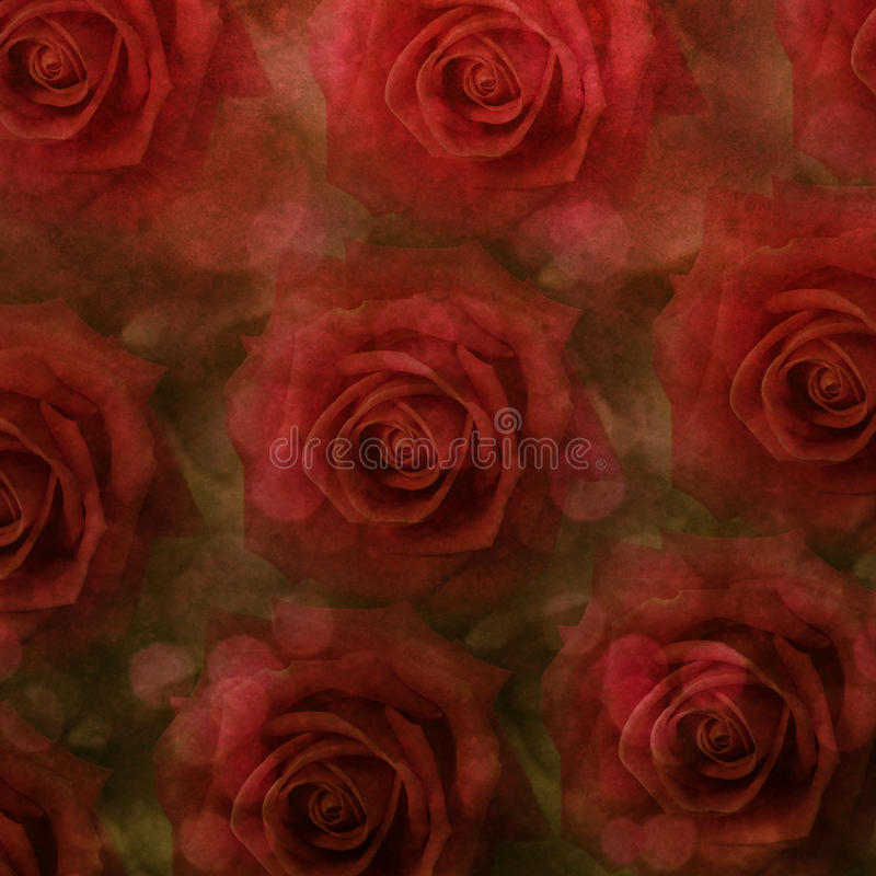Fundo das rosas de Grunge fotos de stock royalty free