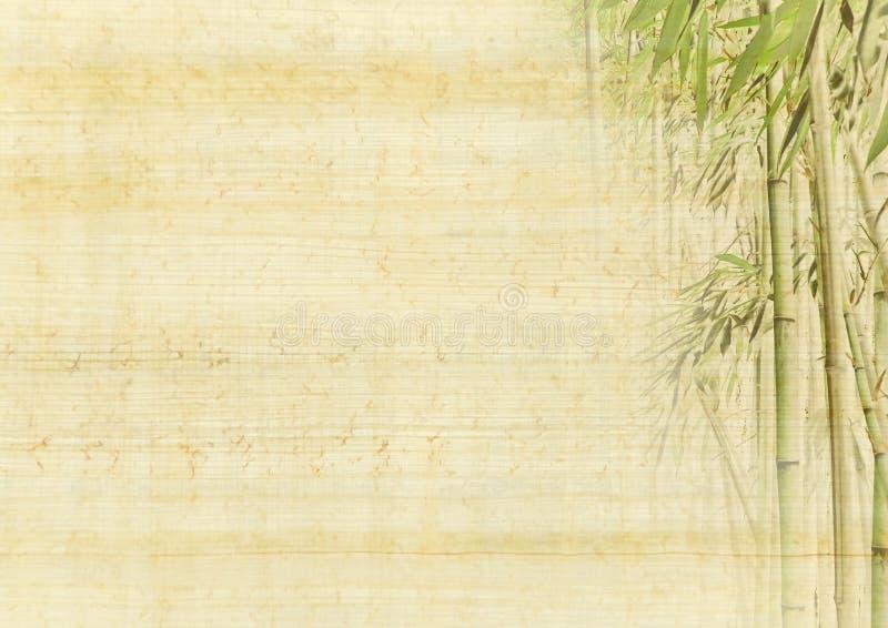 Fundo de bambu foto de stock royalty free