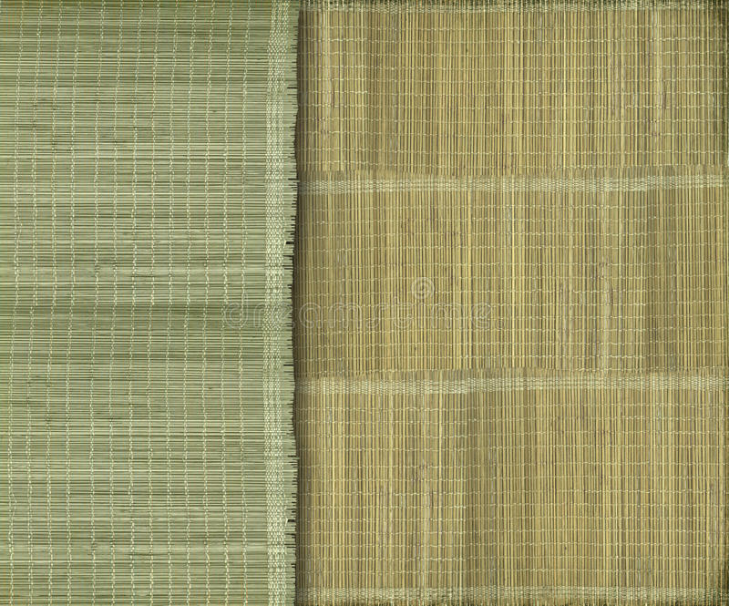 Fundo de bambu verde e amarelo Earthy fotografia de stock royalty free