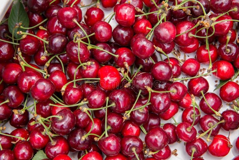 Fundo de Cherry Tree/cereja/cereja com folha fotografia de stock