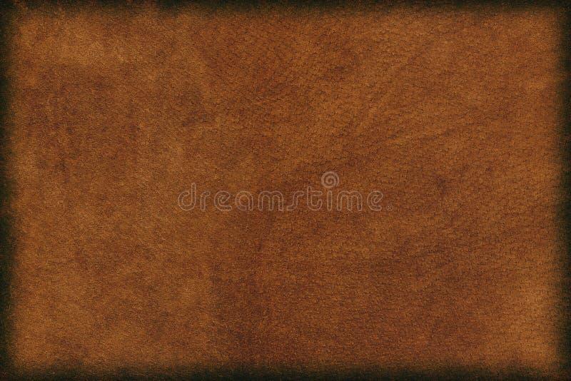 Fundo de couro imagens de stock