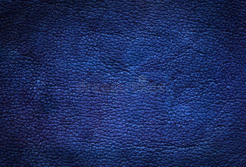 Fundo de couro azul. imagem de stock