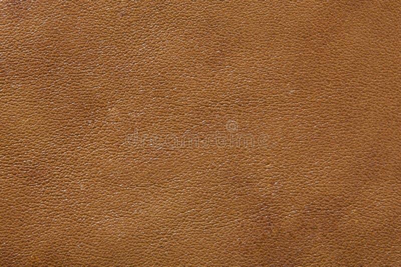 Fundo de couro da textura imagens de stock royalty free