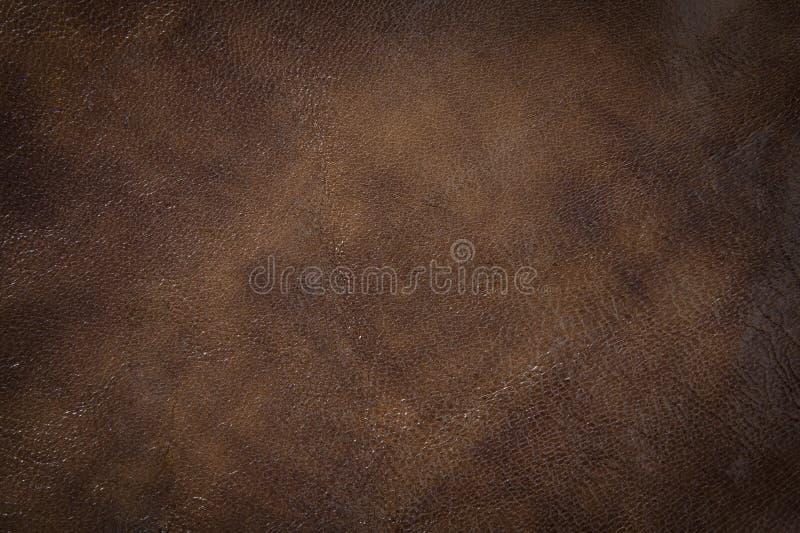 Fundo de couro da textura fotografia de stock