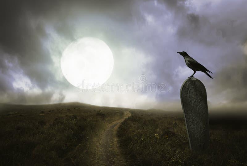 Fundo de Dia das Bruxas com corvo e sepultura imagens de stock