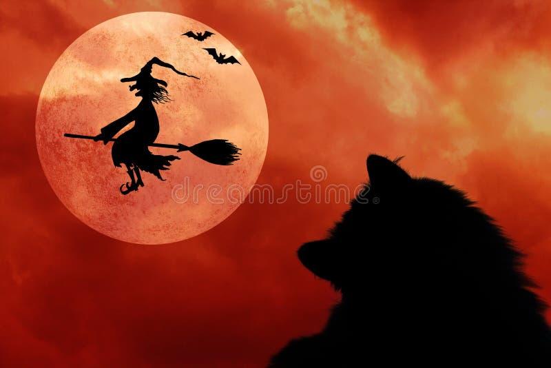 Fundo de Dia das Bruxas com gato, bastões, Lua cheia e bruxa do voo ilustração stock