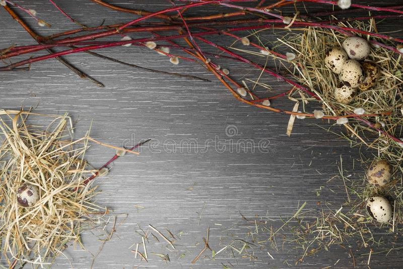Fundo de easter da vista superior Ovos de codorniz felizes de easter na tabela de madeira com salgueiro bonito De madeira rústico foto de stock