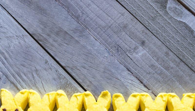 Fundo de Easter Orelhas amarelas do coelho no fundo de madeira imagem de stock