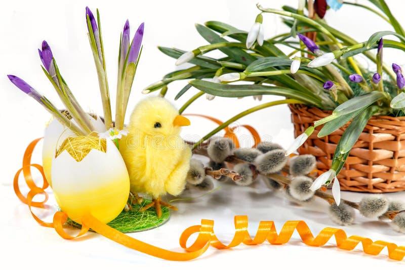 Fundo de Easter placas para o projeto Ovos da páscoa decorativos e galinha amarela na grama, snowdrops frescos bonitos da mola no fotografia de stock royalty free
