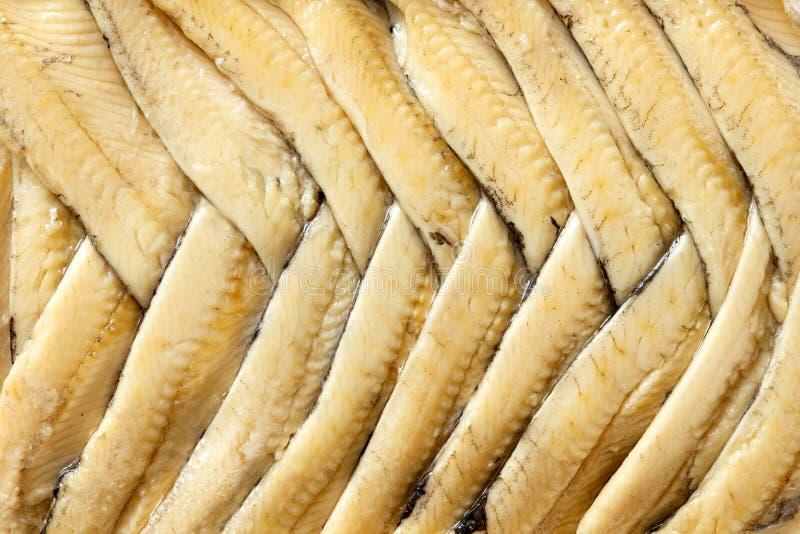 Fundo de faixas da anchova no óleo arranjado no teste padrão de desenhos em espinha de cima de closeup imagem de stock royalty free