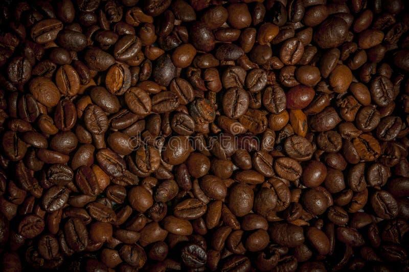 Fundo de feijões de café roasted foto de stock royalty free