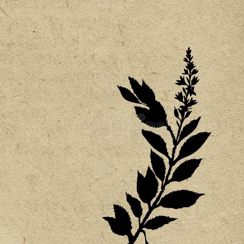 Download Fundo de Grunge ilustração stock. Ilustração de herb - 12800746