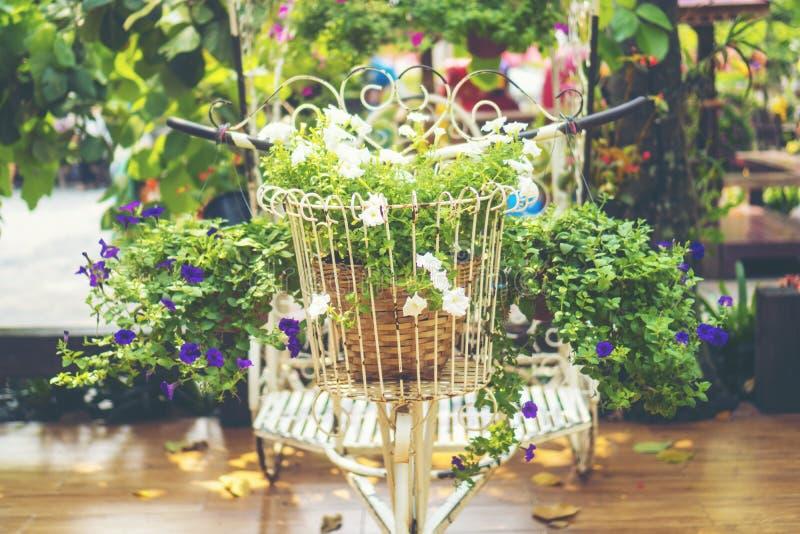Fundo de jardinagem floral com variedade de fluxo colorido do jardim fotos de stock royalty free
