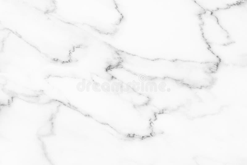 fundo de mármore branco elegante fotos de stock royalty free