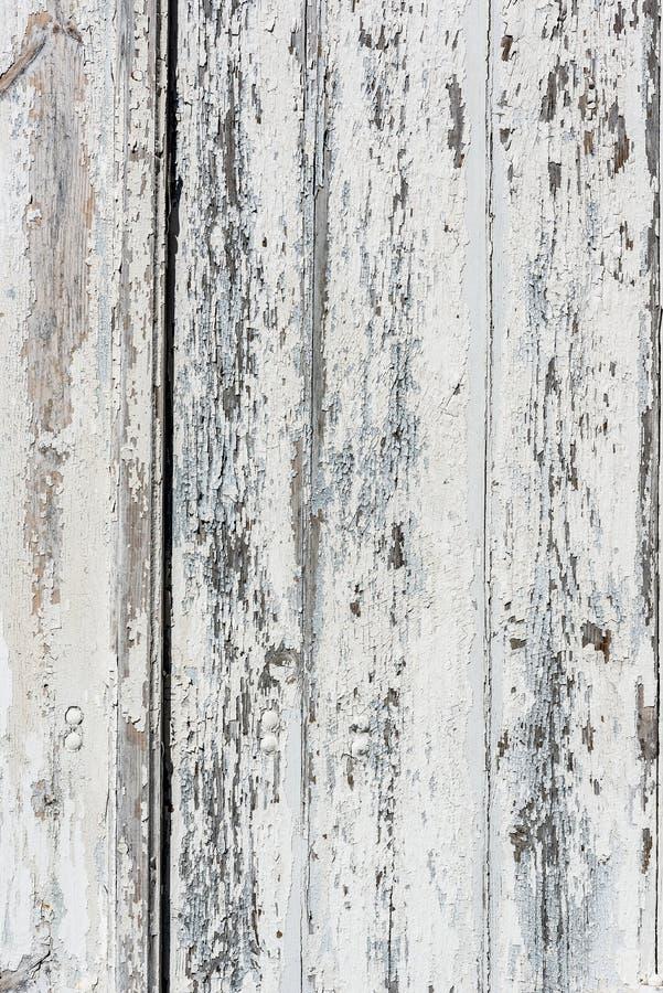 Fundo de madeira branco resistido com a pintura lascada e a casca imagens de stock