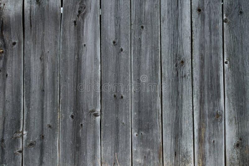 Fundo de madeira cinzento velho autêntico da superfície de madeira como o backgr imagens de stock royalty free