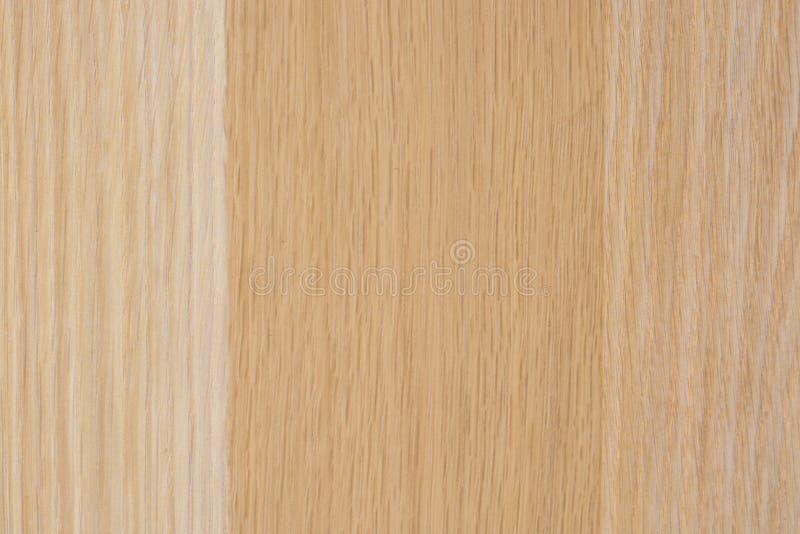 Fundo de madeira, madeira clara, teste padrão listrado vertical fotos de stock royalty free